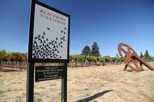 Blackbird-Vineyards-Napa (6)