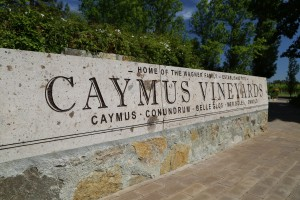 Caymus-Winery-Rutherford (2)