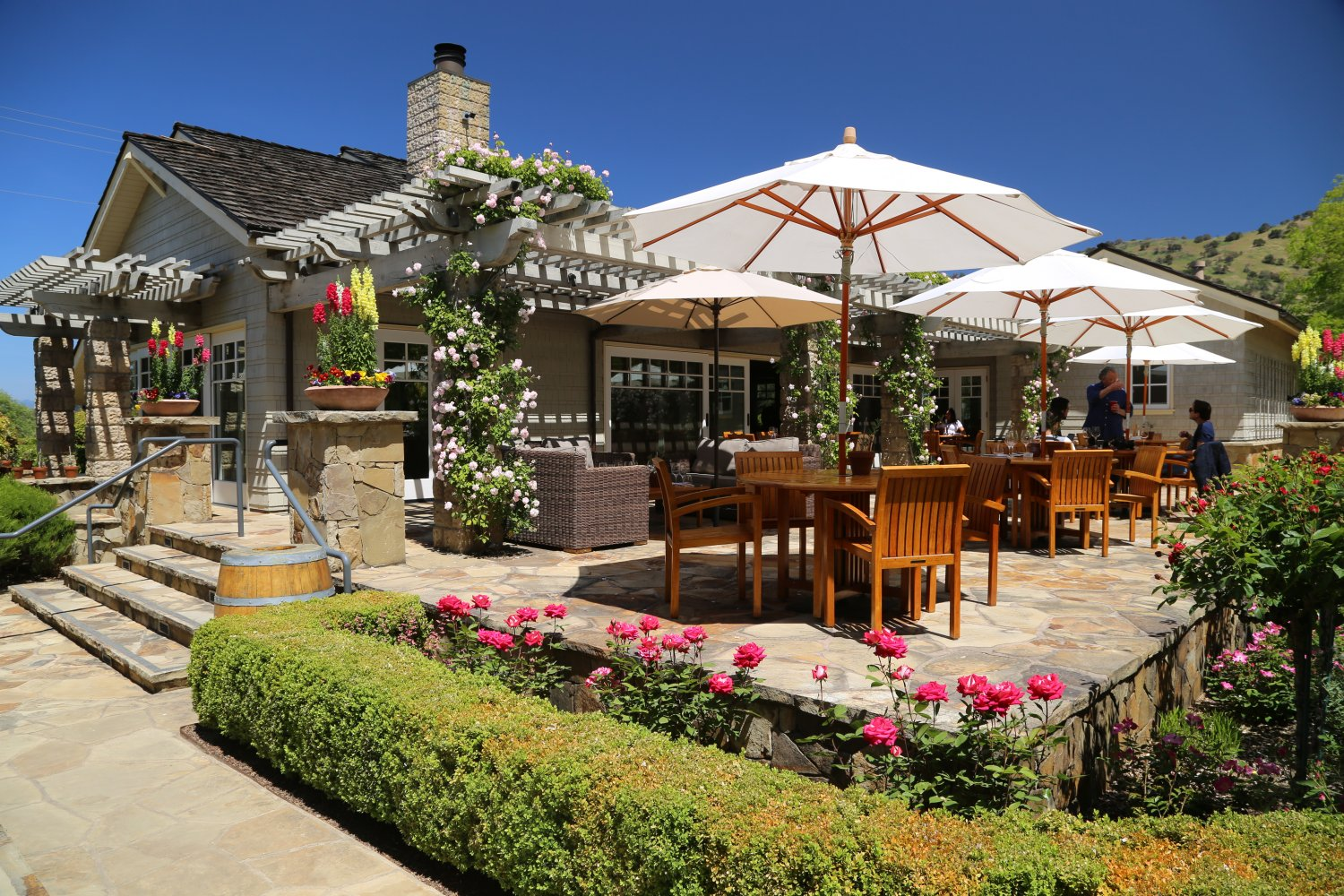 Cliff Lede Vineyards - The Napa Wine Project