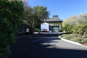 Cliff-Lede-Winery (7)