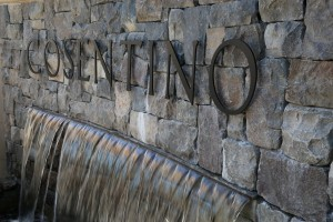 Cosentino-Winery-Napa-Valley (3)