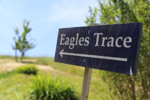 Eagles-Trace-Winery (3)