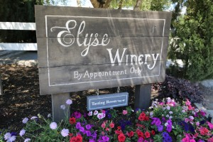 Elyse-Winery-Napa (1)