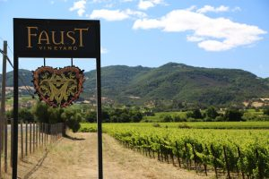 Faust-Vineyard (3)