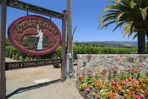 Heitz-Cellars-Tasting-Room (2)