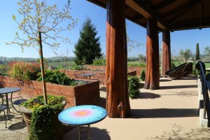Jamieson-Ranch-Vineyards (6)