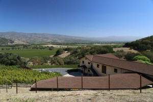 Keever-Vineyards (1)