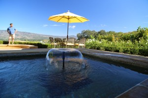 Keever-Vineyards (4)