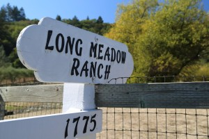 Long-Meadow-Ranch (2)