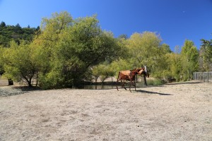 Long-Meadow-Ranch (3)