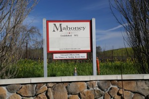 Mahoney-Vineyards