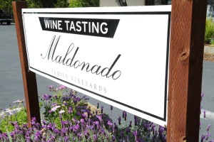 Maldonado-Vineyards-Tasting-Room