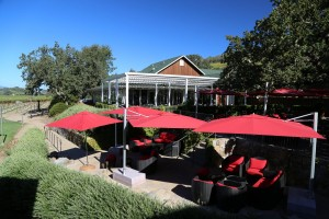 Mumm-Winery-Napa-Valley (10)