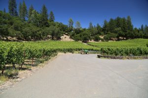 Neal-Family-Winery (3)