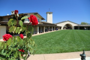 Robert-Mondavi-Winery-Napa-Valley (15)