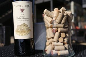 Salvestrin-Winery (14)