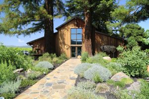 Sequoia-Grove-Winery (9)