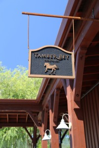 Tamber-Bey-Vineyards (3)