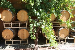 Tedeschi-Family-Winery-Calistoga (5)