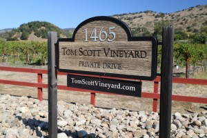 Tom-Scott-Vineyard