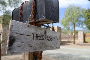 Trespass-Vineyard (1)