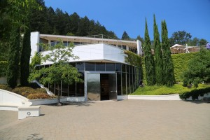 Vineyard-29-St-Helena (1)