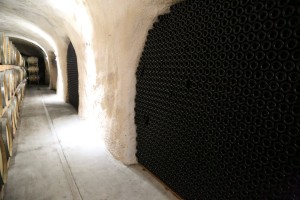 White-Rock-Vineyards (9)