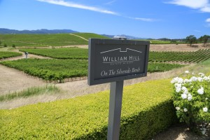 William-Hill-Winery-Napa (4)