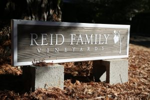 Reid-Family-Winery (6)