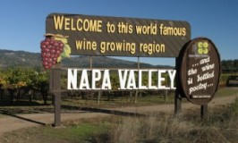 Yes, Napa Winery Numbers are Escalating Rapidly