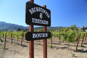 Beckstoffer-Bourn-Vineyard (2)
