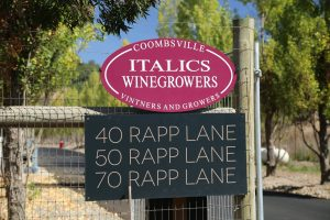 Italics-Winery-Coombsville-Napa-Valley