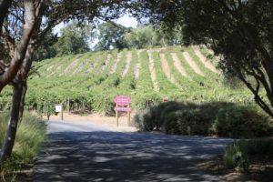 Ackerman-Vineyards