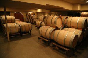 Allora-Vineyards (1)