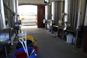 Anomaly-Vineyards-St-Helena (4)