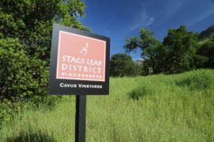 Cavus-Vineyard