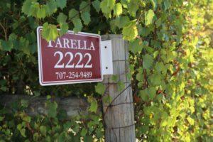 Farella-Vineyard