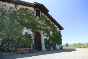 Grgich-Hills-Winery-Napa (14)