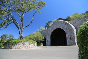 Palmaz-Vineyards (16)