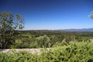 Palmaz-Vineyards (33)
