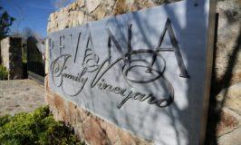 Revana Family Vineyards