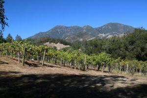 Storybook-Mountain-Estate-Napa (5)
