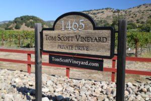 Tom-Scott-Vineyard