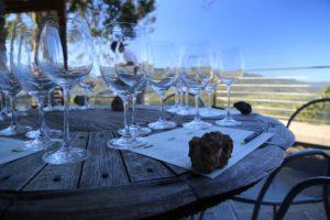 Viader-Winery-Napa-Valley (4)