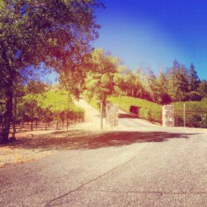 juslyn-vineyards (1)