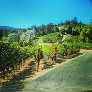 juslyn-vineyards (2)