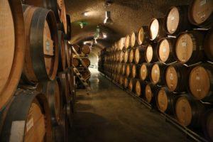 lobo-wines