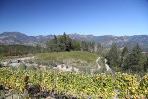 mueller-vineyards