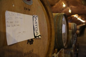 MTGA-Vineyards