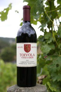 Toivola-Vineyards (1)